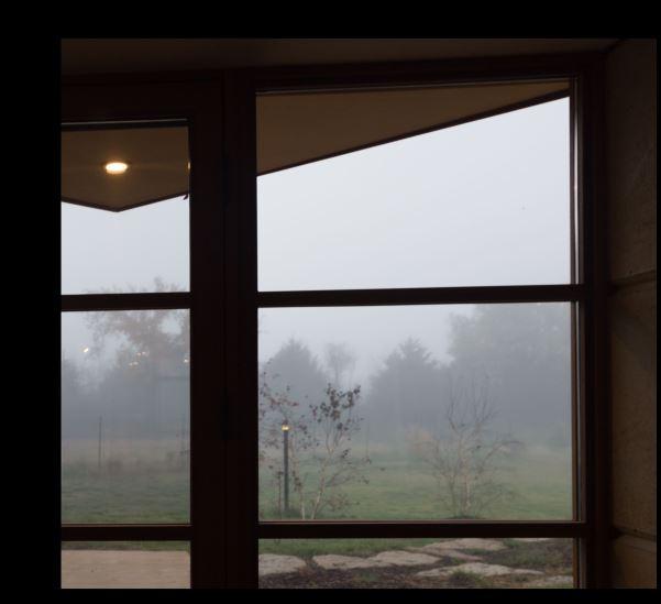 fog timshala 10.23.2014.