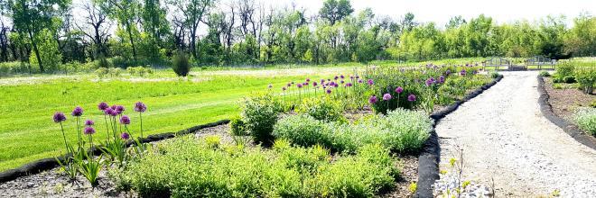 Perennial Border toward benches May 5 2019 161846
